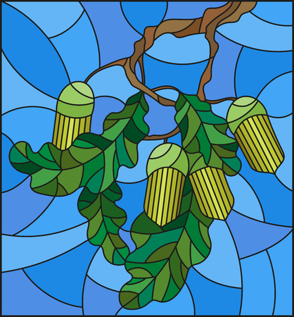 immature: Illustration in stained glass style with oak branch with immature acorns and leaves leaf on blue background Illustration