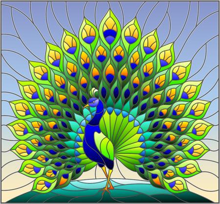 Illustrazione nello stile del vetro macchiato con il pavone variopinto su cielo blu, fondo Vettoriali