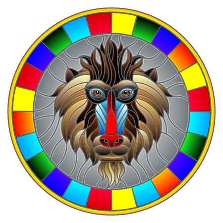 The illustration in stained glass style painting with a monkeys head , a circular image with bright frame Illustration