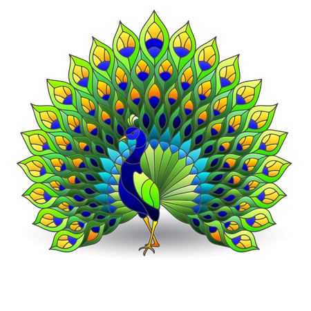 Stained glass element with peacock bird, color images isolated on white background