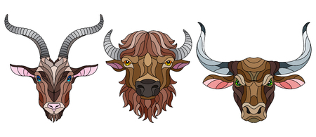 A set of stained glass items, stained glass with animal heads, a goat,  a bison and a bull, isolates on white background