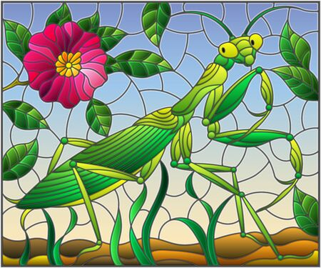 Illustration in stained glass style with green mantis and pink flower on grass and sky background