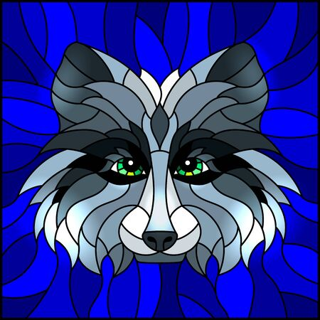 The illustration in stained glass style painting with a raccoon head , on a blue background, square image