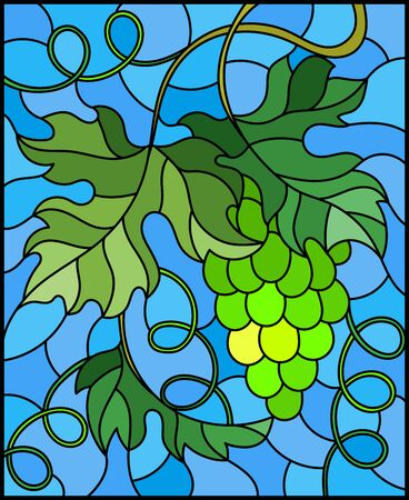The illustration in stained glass style painting with a bunch of green grapes and leaves on blue background Banque d'images - 133856066