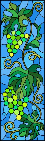 The illustration in stained glass style painting with a bunch of green grapes and leaves on blue background,vertical image Stok Fotoğraf - 133856076