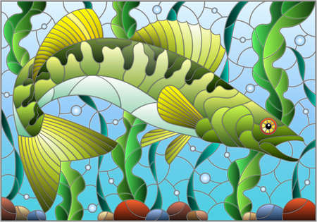 Illustration in stained glass style with pike perch fish on the background of algae, air bubbles and water