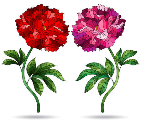 A set of illustrations in a stained glass style with bright peony flowers, isolated on a white background 矢量图像