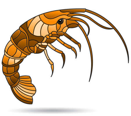 A stained glass illustration with an abstracti shrimp, the animal isolated on a white background, monochrome, tone brown