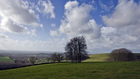 Winter landscape on Cranborne Chase in Dorset Stock Photo - 12779866