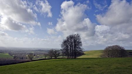 shaftesbury: Winter landscape on Cranborne Chase in Dorset Stock Photo