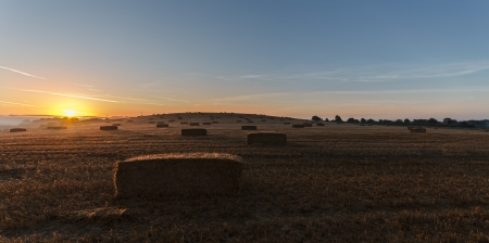 Hay bales in a misty field at sunrise Stock Photo - 16505686