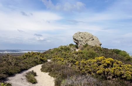 tertiary: The Agglestone Rock on Godlingston Heath  Studland in Dorset, consisting of weathered Tertiary sandstone and overlooking Poole Harbour Stock Photo