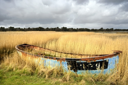 salt marsh: Rusty old shipwrecked and bandoned boat in reeds on salt marshes in Poole Harbour, Dorset