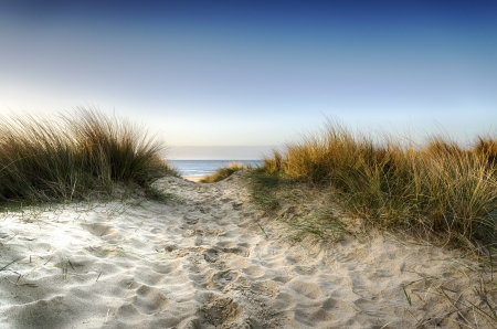 Path leading thorugh sand dunes to the beach at Sandbanks in Poole, Dorset Stock Photo