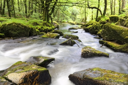 The river Fowey flowing through ancient woodland at Golitha Falls on the southern edge of Bodmin Moor in Cornwall  photo