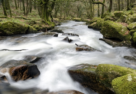 bodmin: Water cascading through ancient woodland at Golitha Falls on the edge of Bodmin Moor in Cornwall Stock Photo