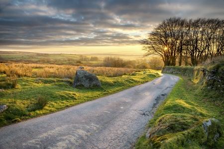 Een land weggetje dat door Bodmin Moor in Cornwall