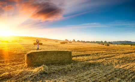 Young woman with child on her back working in the fields at harvest time photo
