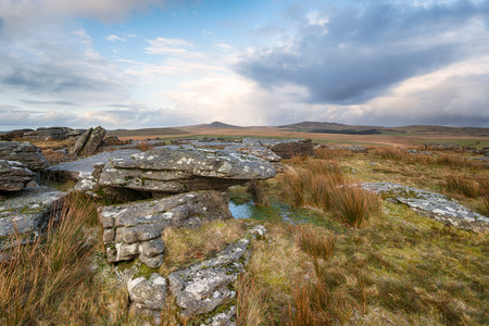 willy: Wild landscape of Bodmin Moor in Cornwall looking towards the peaks of Rough Tor and Brown Willy