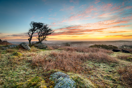 A frosty March sunrise at Helman Tor a craggy outcrop of rugged moorland near Bodmin in Cornwall