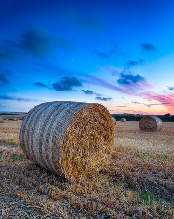 Hay bales at harvest time in Cornwall photo