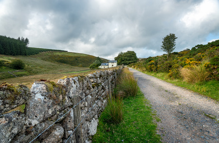 Country lane leading to Wistmans Wood at Two Bridges on Dartmoor National Park in Devon photo
