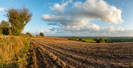 Autumn view across fields in the countryside in Cornwall photo