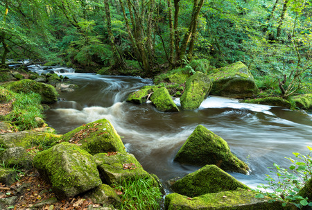 bodmin: The river Fowey flowing through Bodmin Moor in Cornwall at Golitha Falls Stock Photo