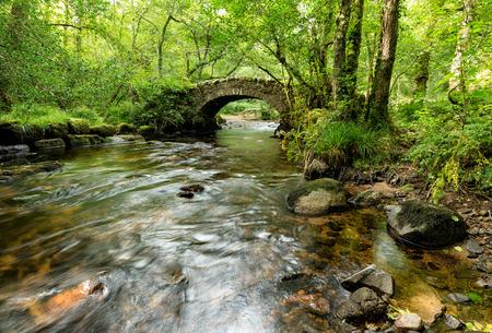 동부 다트 무어에서 Hisley 우즈 강을 횡단하는 고대 돌 packhorse 다리 스톡 콘텐츠