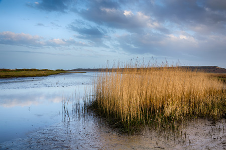 hengistbury: Dusk at Stanpit Marsh in Christchurch, looking out toward Hengistbury Head Stock Photo