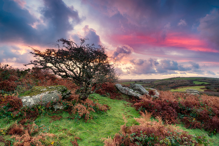 bodmin: Beautiful dramatic sunrise over rugged moorland countryside at Helman Tor near Bodmin in Cornwall Stock Photo