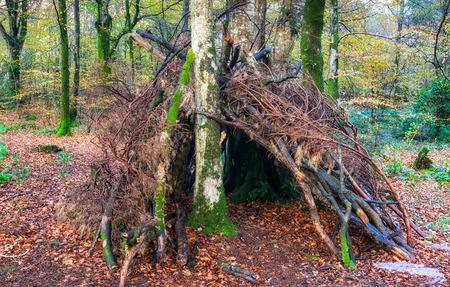 Een bivak survival onderdak in het bos gemaakt van stokken en takken