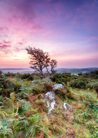 bodmin: Sunrise over rugged English countryside at Helman Tor near Bodmin in Cornwall