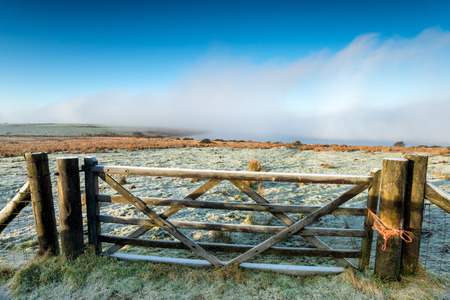 shrouded: A wooden gate leading to Colliford shrouded in fog on Bodmin Moor in Cornwall