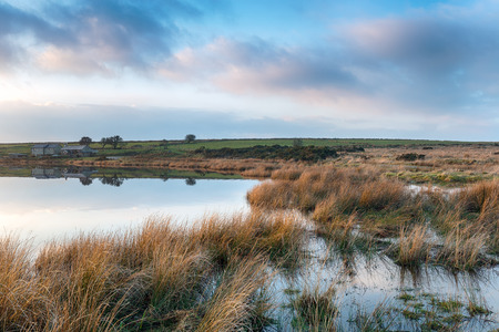 bodmin: Cottages on the lakeside at Dozmary Pool on Bodmin Moor in Cornwall