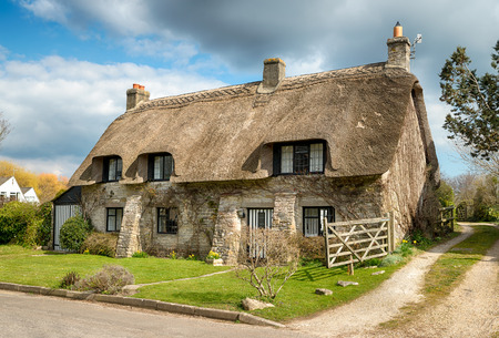 vibrant cottage: Beautiful thatched cottage at Corfe castle village on the Purbeck Hills in Dorset