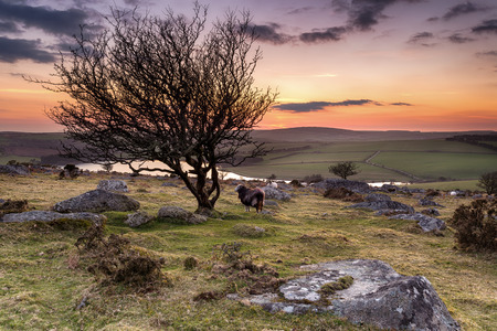 bodmin: Night falls over Bodmin Moor in Cornwall, from Tregarrick Tor overlooking Siblyback Lake