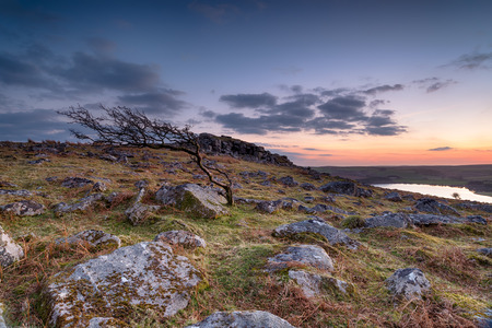 bodmin: Dusk over Bodmin Moor in Cornwall looking out to Siblyback lake and Tregarrick Tor