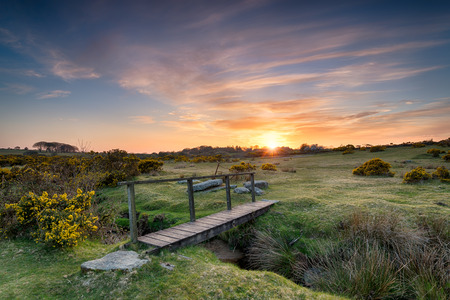 foot bridge: Sunset at a wooden foot bridge over a stream near St Breward on Bodmin Moor in Cornwall