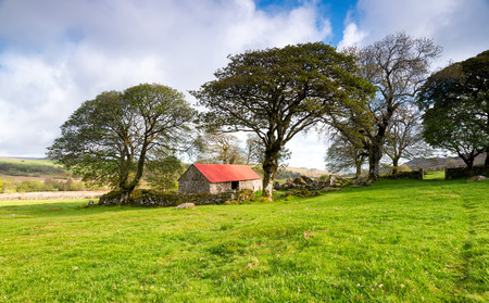 mire: An old stone barn at Emsworthy Mire on Dartmoor National Park in Devon Stock Photo