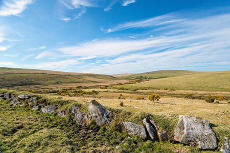 grassy: Rugged grassy plains of Bodmin Moor in Cornwall, looking out to Leskernick Stock Photo