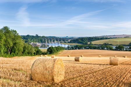 paisaje de campo: Balas de heno en tiempo de cosecha en el campo Cornsih