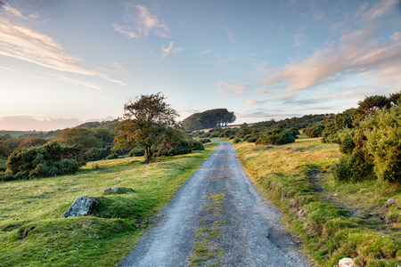 bodmin: A country lane running through Bodmin Moor in Cornwall Stock Photo