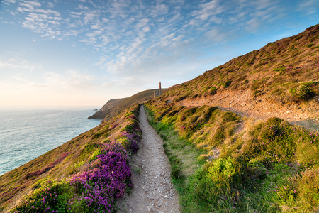 south west coast path: Summer on the South West Coast Path at St Agnes on the Cornwall coast