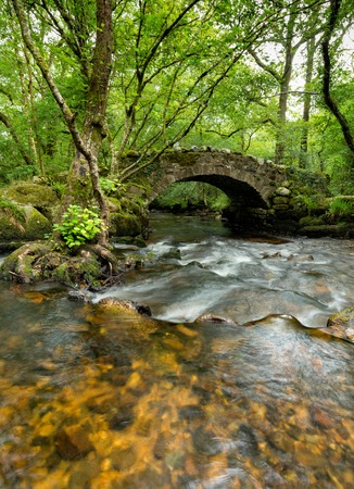 old packhorse bridge: An old packhorse bridge crossing the river Bovey at Hisley Woods on dartmoor in Devon Stock Photo