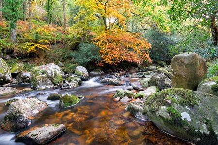 Magical forest river flowing over mossy boulders at Dewerstone on Dartmoor in Devon Stock Photo