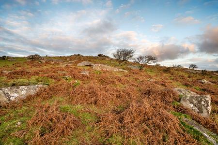 bodmin: Cloudy skies above Tregarrick Tor near Minions on Bodmin Moor in Cornwall Stock Photo