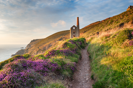 south west coast path: Summer on the South West Coast Path at Wheal Coates as it approaches St Agnes Head on the Cornwall coast