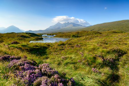 Peat bog and heather on the Isle of Skye in Scotland with the Cuillin mountain range in the background Stock Photo