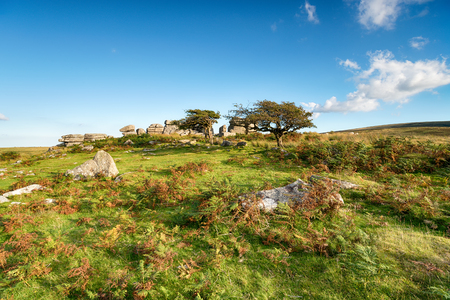 Combestone Tor near Hexworthy on Dartmoor in Devon Stock Photo